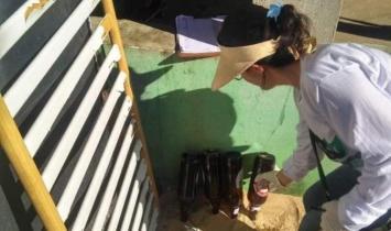 Mutirão contra o Aedes aegypti em Atafona e Grussaí