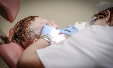 Pesquisa vai atualizar dados sobre saúde bucal dos brasileiros