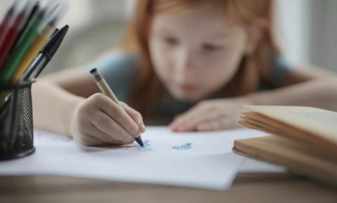 O que é o Homeschooling e como ele pode funcionar no Brasil?