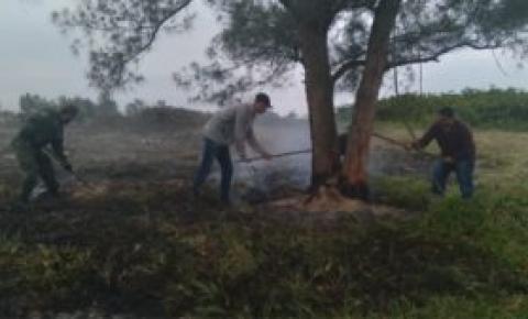 São Francisco de Itabapoana: Queimada é controlada em área de restinga entre Santa Clara e Gargaú