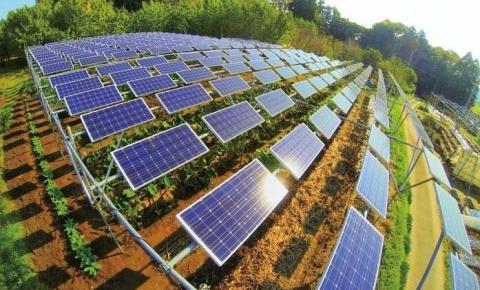 Agricultores utilizam energia solar para reduzir gastos